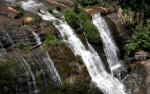 Kodaikanal--waterfalls-caused-by-continuous-rains-----Intensity-of-garlic-sowing-works