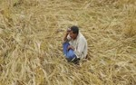 Madhya-Pradesh-farmers-struggle-with-Bollywood-actor-Sushant-S-PHOTO